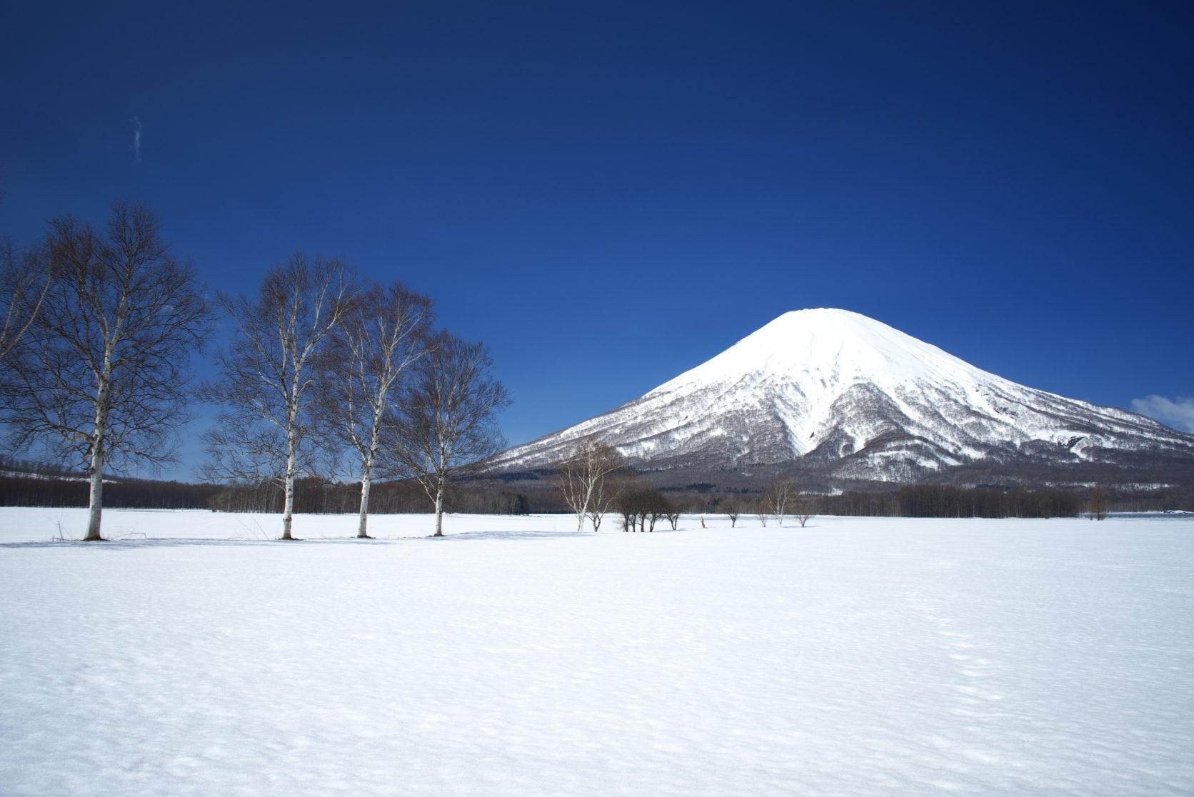 北海道の名物グルメ